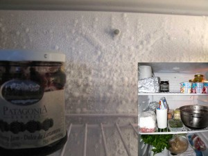 fridgefrost